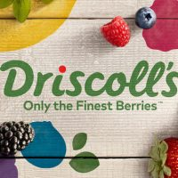 driscolls-logo-hero
